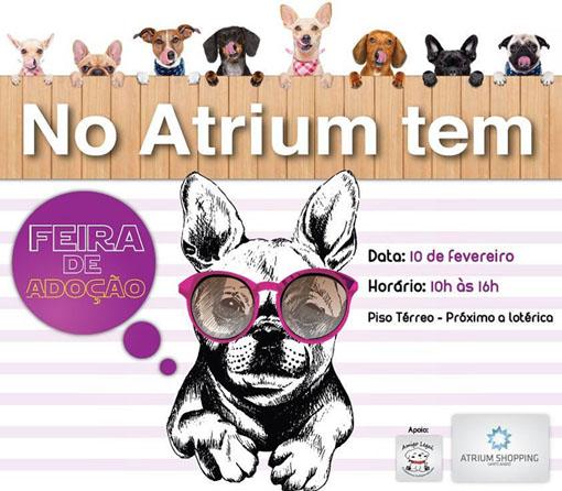 Atrium Shopping realiza feira de adoção de animais no domingo (10)