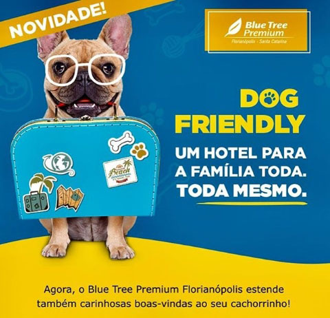 Blue Tree Hotels oferece serviços pet e dog friendly