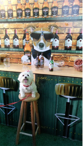 Dog Beer inaugura o primeiro boteco pet do Brasil