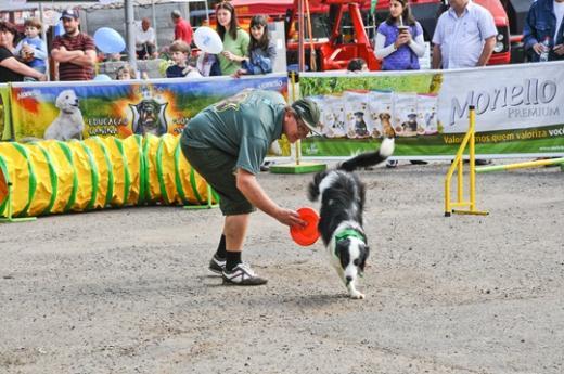 Cães adestrados cativam o público do Rural Show