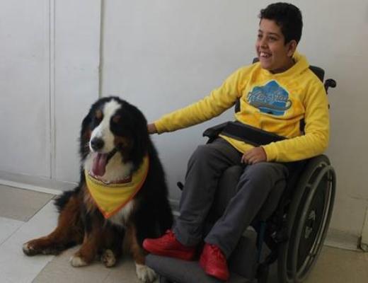 Cão Magnus visita AACD de Osasco (SP) no início de junho