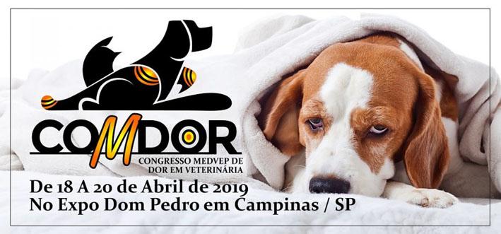 COMDOR 2019 reunirá veterinários para debater alternativas de minimizar a dor animal