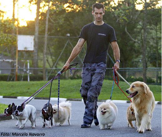 Seu cão vive puxando a guia durante a caminhada?