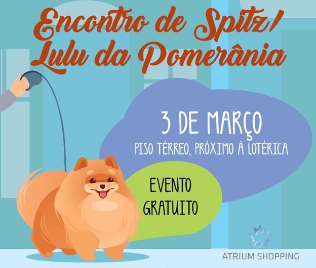 Atrium Shopping promove Encontro de Cães da raça Spitz