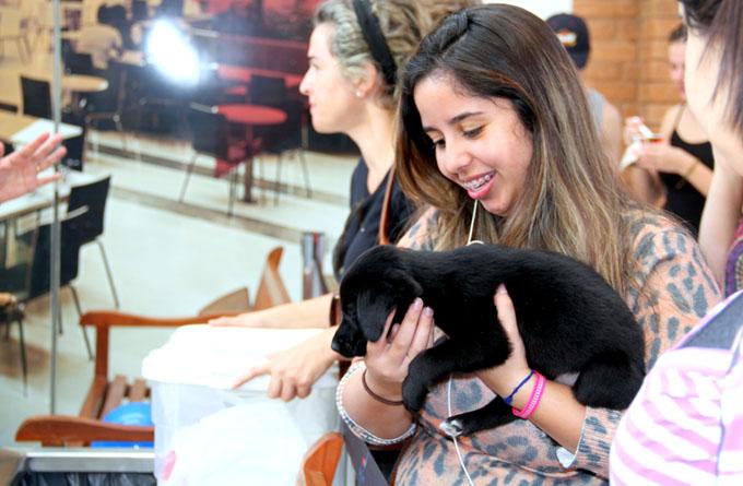 Feira de adoção de pets no Pátio Cianê será amanhã (16)