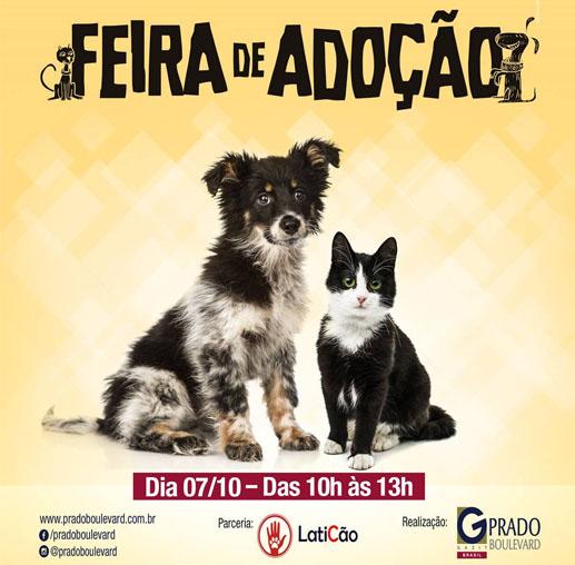 Shopping Prado Boulevard realiza feira de adoção de animais neste sábado (07)