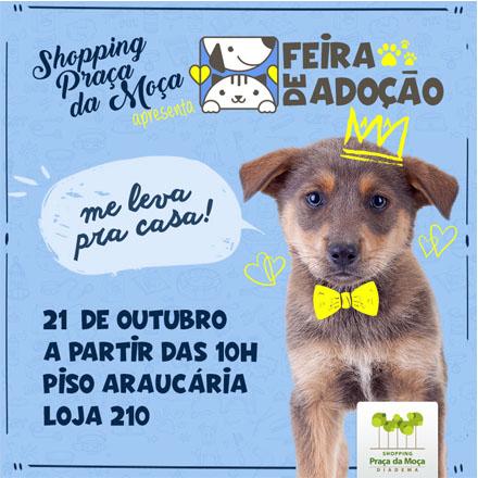 Shopping Praça da Moça realiza Feira de Adoção de Animais