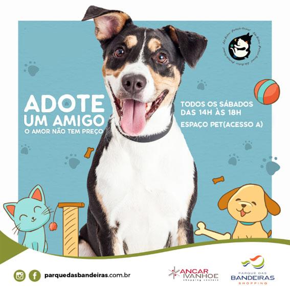 Shopping Parque das Bandeiras realiza Feira de Adoção com veterinário solidário