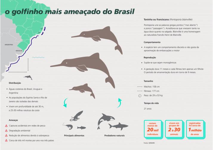 FUNBIO lança ação multiplataforma em defesa das toninhas