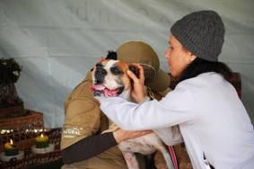 Guabi e Pet Center Marginal promovem PET Relax nos dias 11 e 12 de agosto