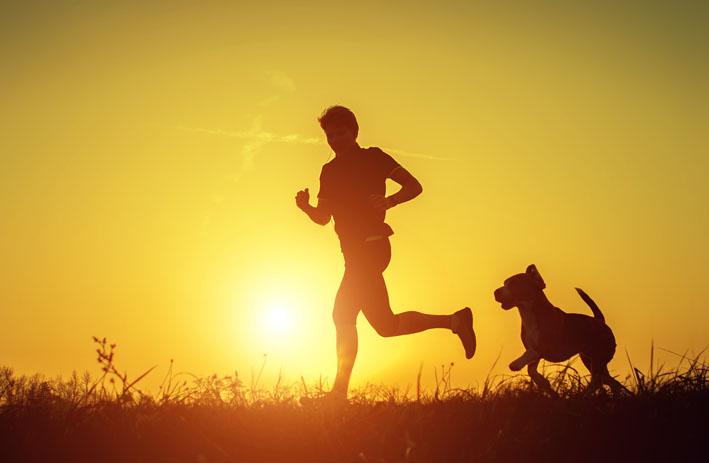 Cachorros são bons companheiros para praticar corrida