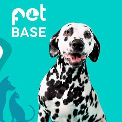 Linha High Pet Biotec traz ativos específicos para tratamento e prevenção de doenças