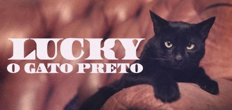 Lucky, o gato da sorte