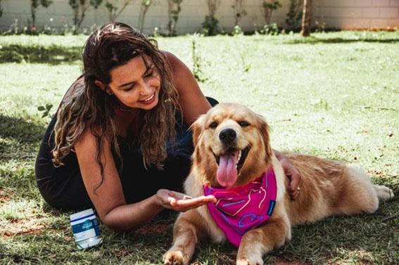 Outubro Rosa: pets também podem desenvolver câncer de mama