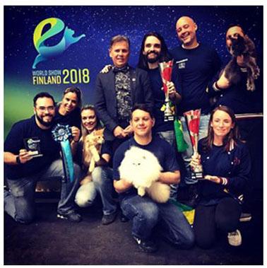 Gatos brasileiros conquistam campeonato mundial na Europa