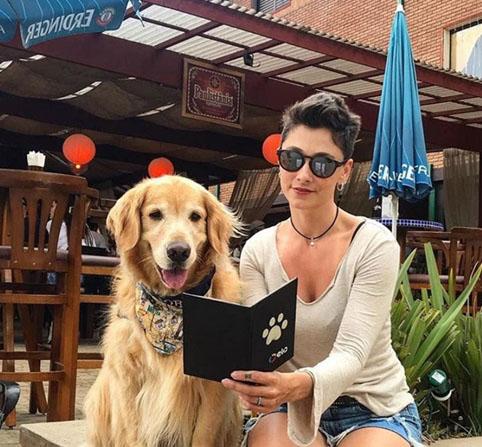 6 motivos para viajar com seu pet para Monte Verde
