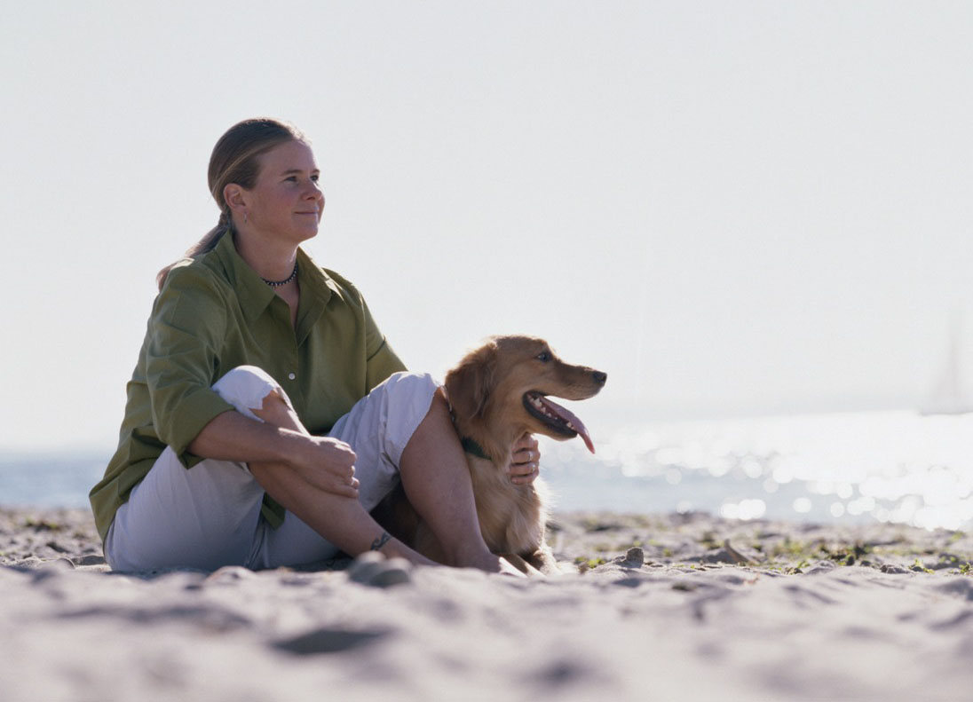 Saiba o que fazer com seu animal de estimação nas férias