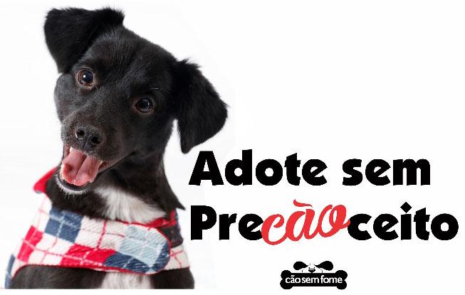 Shopping Metrô Itaquera realiza 1ª Feira de Adoção de Animais