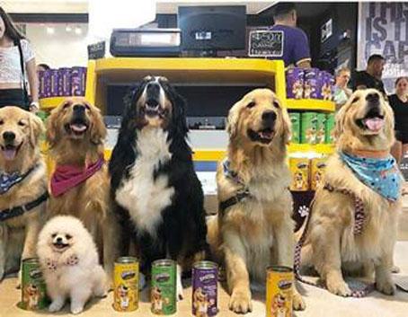 Inspirada em docerias a granel, Snackel chega a shoppings Petfriendly