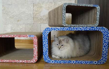Pet Games aposta em tocas funcionais para gatos com design inovador