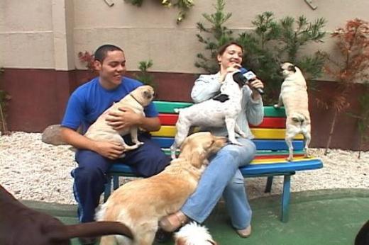 UltraCão exibe matéria especial em creche para cães