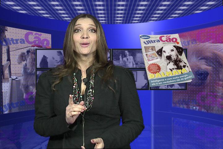 UltraCão visita protetora de animais que abriga cães resgatados da rua
